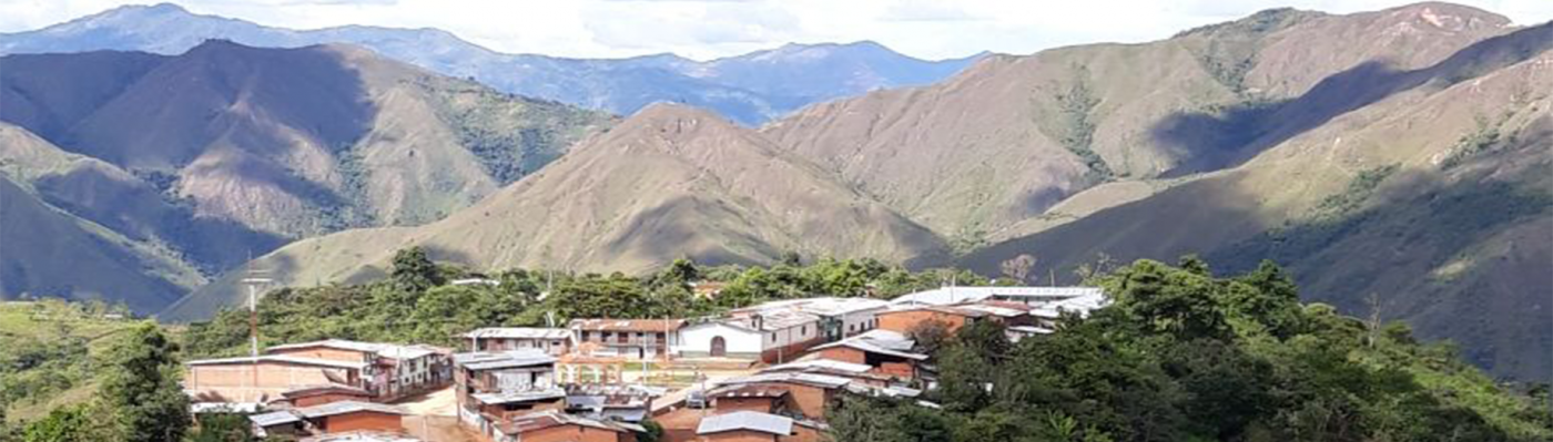 Peruvian Organic Coffee